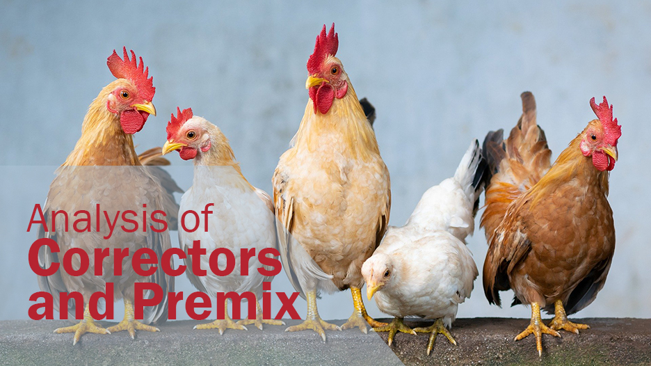 Analysis-of-Correctors-and-Premix-Labocor-Analítica